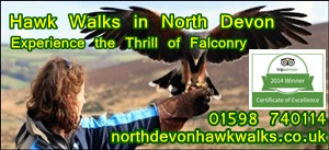 NorthDevon-HawkWalks-front-page-advert