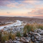Exmoor in winter