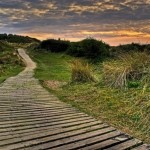 Boardwalk on Braunton Burrows