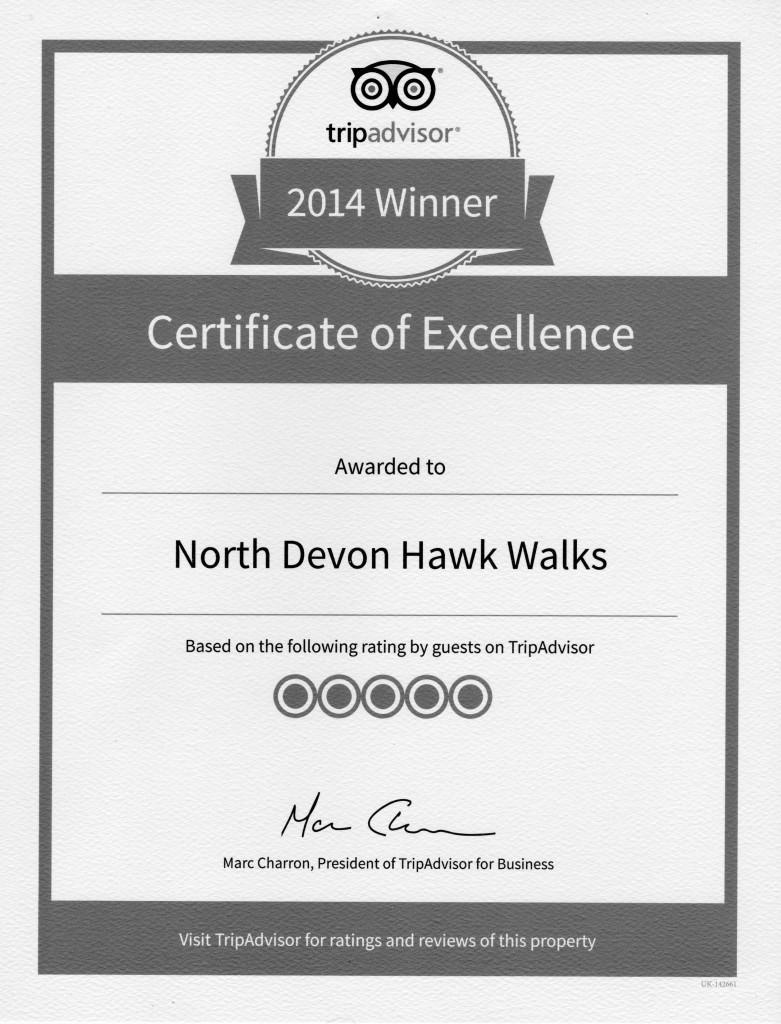 Hawk Walks Certificate 2014