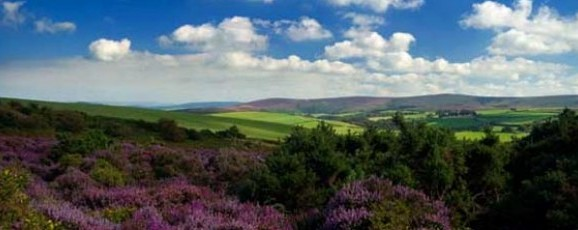 New Walking Guide for North Devon