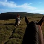 An Exmoor ridge
