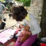 Feeding the Piglet