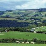 Halse Farm