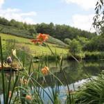 Huxtable Farm Pond